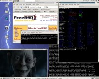 MPlayer pod FreeBSD
